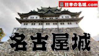 『名古屋城』を超満喫する観光ガイド(住所・写真スポット・御城印・駐車場)まとめ