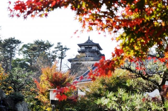福井県『丸岡城』を120%楽しむ観光ガイド(写真スポット・アクセス・スタンプ・駐車場)を徹底紹介