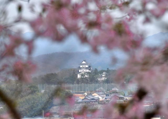 三重県『伊賀上野城&上野公園』を120%楽しむ観光ガイド(写真スポット・アクセス・スタンプ・駐車場)を徹底紹介