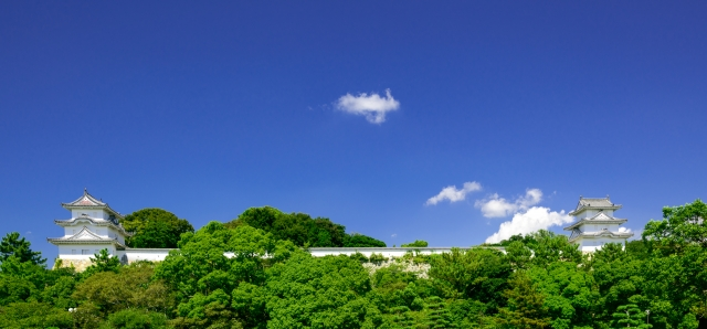 兵庫県『明石城』を120%楽しむ観光ガイド(写真スポット・アクセス・スタンプ・駐車場)を徹底紹介