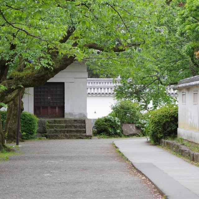 神奈川県『小田原城』を120%楽しむ観光ガイド(写真スポット・アクセス・スタンプ・駐車場)を徹底紹介