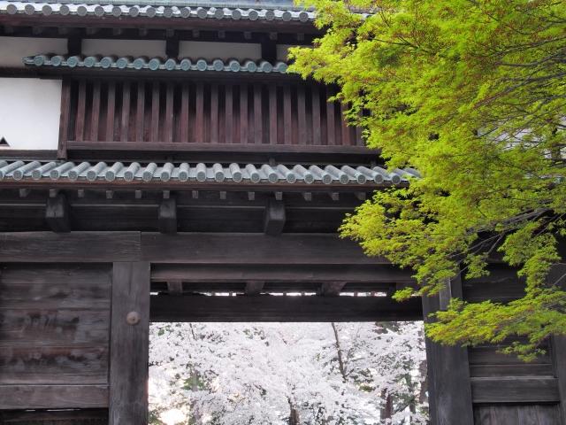 青森県『弘前城&弘前公園』を120%楽しむ観光ガイド(写真スポット・アクセス・スタンプ・駐車場)を徹底紹介