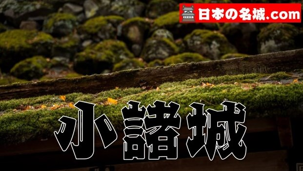 【長野県】『小諸城址懐古園』は日本で唯一の穴城(アクセス・スタンプ・駐車場・写真スポット)観光情報まとめ