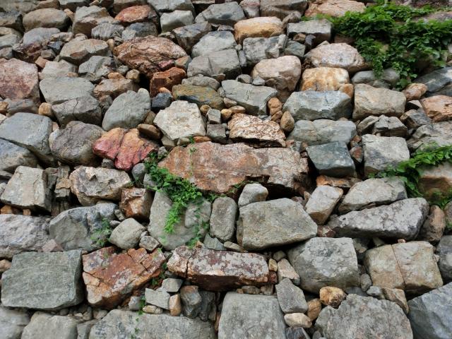 京都『福知山城&福知山城公園』を120%楽しむ観光ガイド(写真スポット・アクセス・スタンプ・駐車場)を徹底紹介